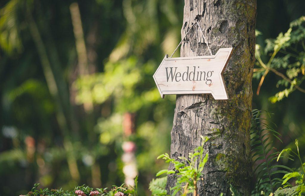 Hocking Hills Destination Wedding